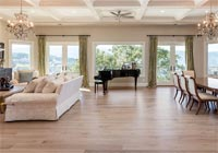 living room wide plank hardwood