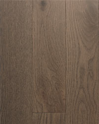 Forest Edge Red Oak