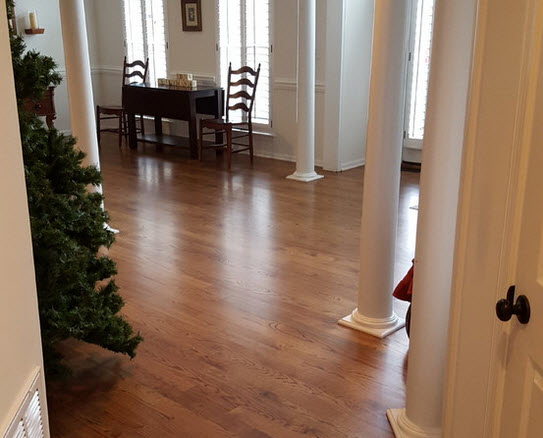 Red oak clear hardwood floor