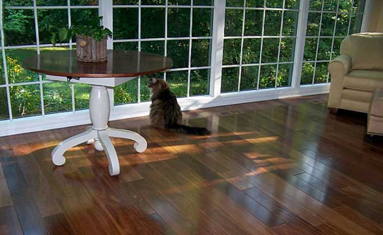 Brazilian Teak Hardwood Flooring Pictures Colors Hardness