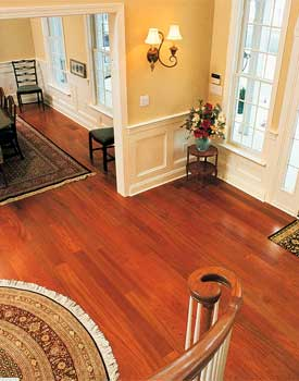 Hardwood Flooring Colors Species Pictures Properties